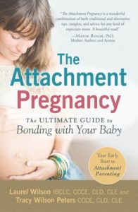 attachment-preg-book-196x300